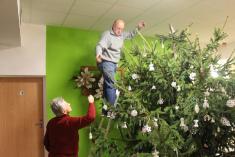 Zdobení vánočního stromu - 28.11. 2018